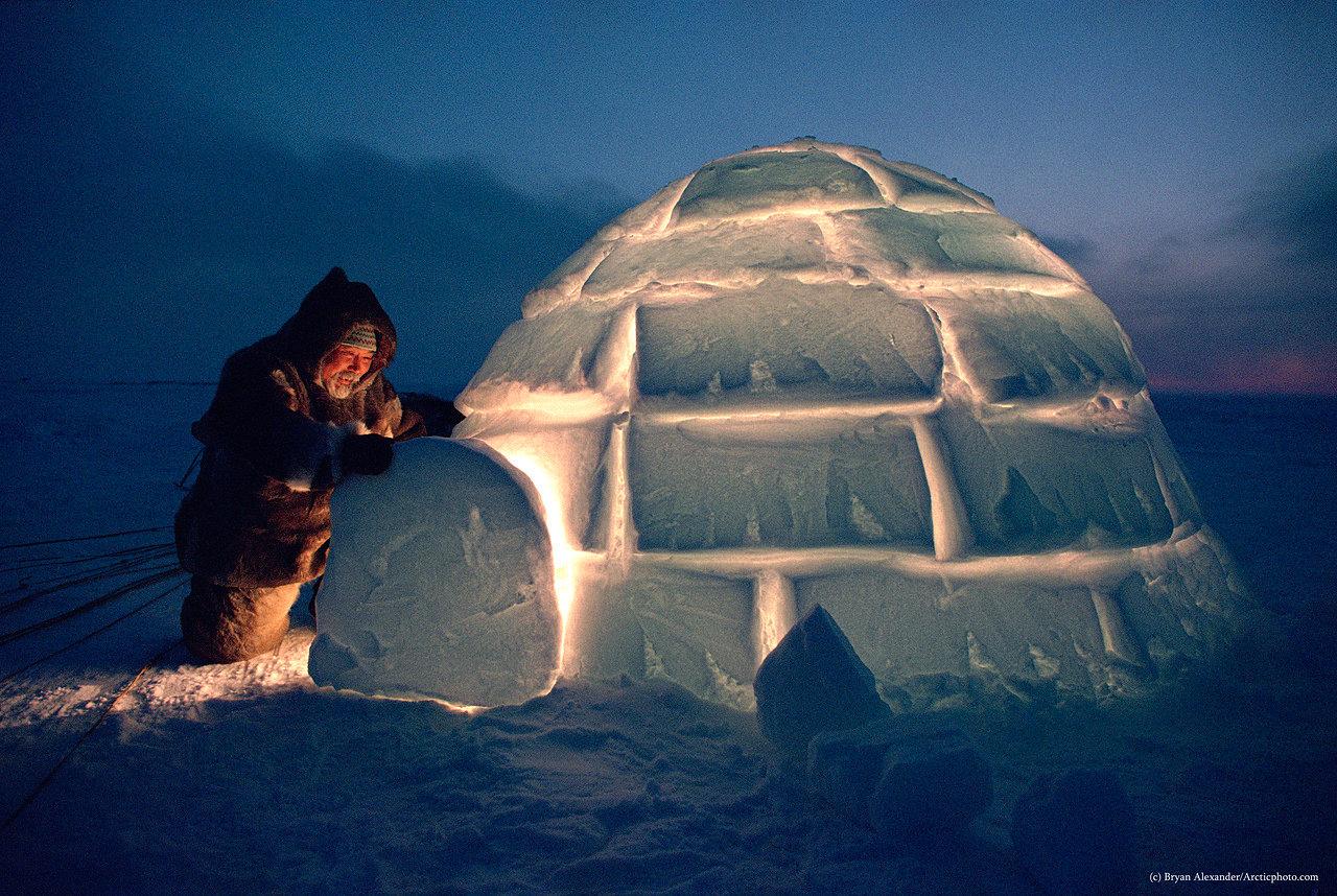 Арктика: круги жизни. Крайний Север Брайана Александера смотреть фото
