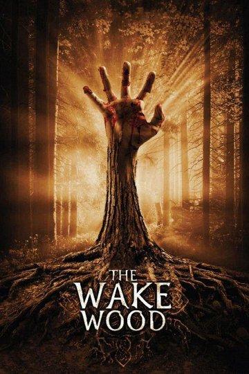 Постер Пробуждающийся лес