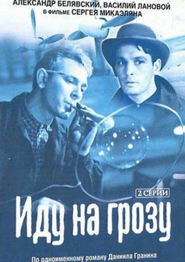 Постер Иду на грозу