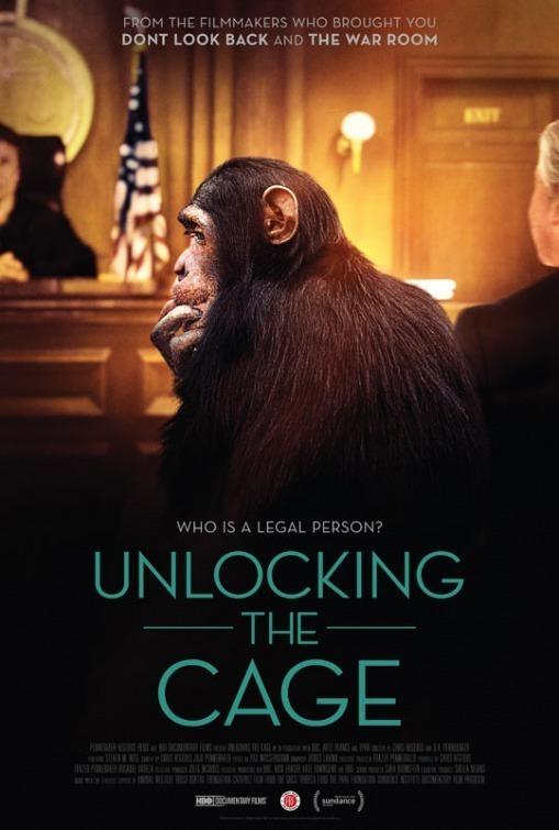 Открывая клетку (Unlocking the Cage)
