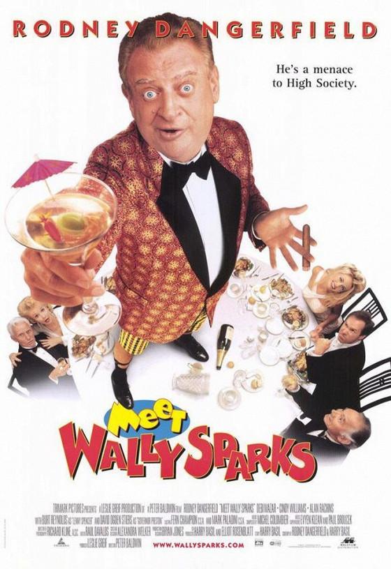Познакомьтесь с Уолли Спарксом (Meet Wally Sparks)