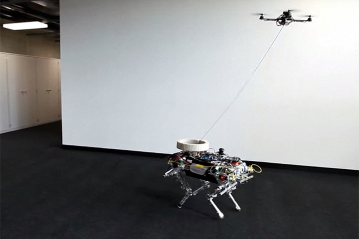 Дрон выгуливает робота-собаку