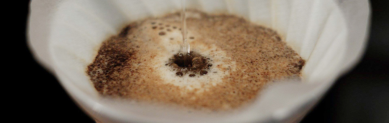 Кофе — это фрукт!