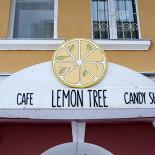 Ресторан Lemon Tree - фотография 1