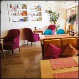 Ресторан Теплые коты - фотография 5