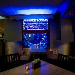Ресторан Дайкон - фотография 6