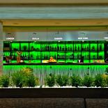 Ресторан Съел бы сам - фотография 6 - Изумительный эко-интрерьер в СъелБыСам