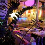 Ресторан Follow Me Café - фотография 3