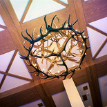 Ресторан Festus - фотография 3 - потолок