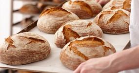 Гид по фестивалю «Хлебокультура»: кого слушать, что есть и покупать