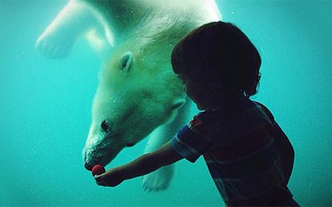 Дневник волонтера Московского зоопарка