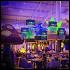 Ресторан Monster Hills - фотография 6