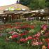 Ресторан Villa Oasis - фотография 2