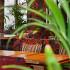 Ресторан Тапчан - фотография 15