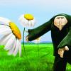 Программа анимационных фильмов «Социальные истории»