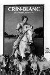 Белая грива / Crin blanc: Le cheval sauvage