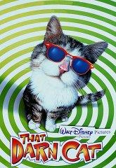 Постер Этот противный кот