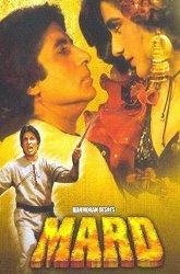 Постер Раджа