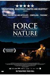 Постер Сила природы