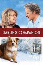 Постер Дорогой компаньон