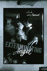 Постер Ангел-истребитель