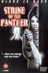 Постер Удар Пантеры