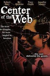 Постер В сетях паутины