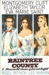 Постер Округ Рэйнтри