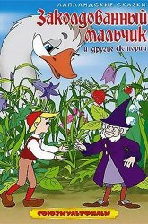 Постер Заколдованный мальчик