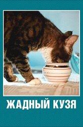 Постер Жадный Кузя