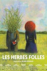 Постер Дикие травы