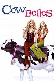 Красавицы коровы / Cow Belles