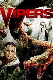 Гадюки / Vipers