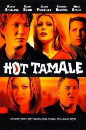 Любовь в стиле сальса / Hot Tamale