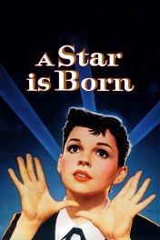 Звезда родилась / A Star Is Born