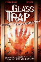 Стеклянный муравейник / Glass Trap