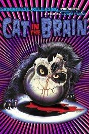 Кошмарный концерт / Un gatto nel cervello