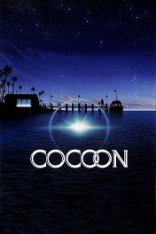 Кокон / Cocoon