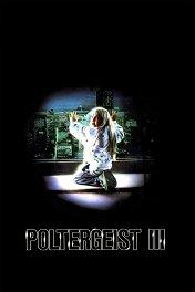 Полтергейст-3: Последняя глава / Poltergeist III