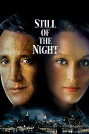 Спокойствие ночи / Still of the Night