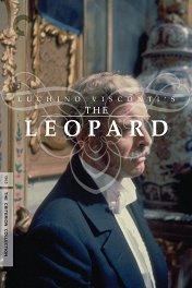 Леопард / Il gattopardo