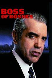 Босс всех боссов / Boss of Bosses