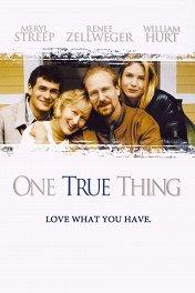 Истинные ценности / One True Thing