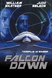 Призрачная цель / Falcon Down