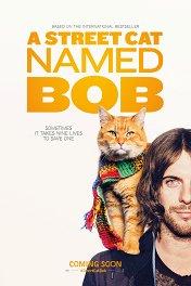 Уличный кот по имени Боб / A Street Cat Named Bob
