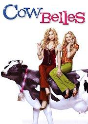 Постер Красавицы коровы