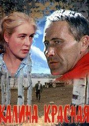 Постер Калина красная