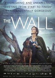 Постер Стена