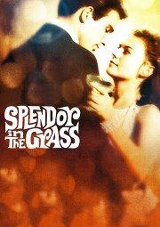 Постер Великолепие в траве