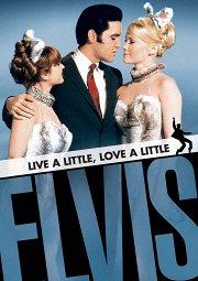Постер Немного жизни, немного любви